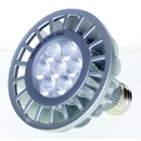 PAR30 LED Bulb in Brushed Steel