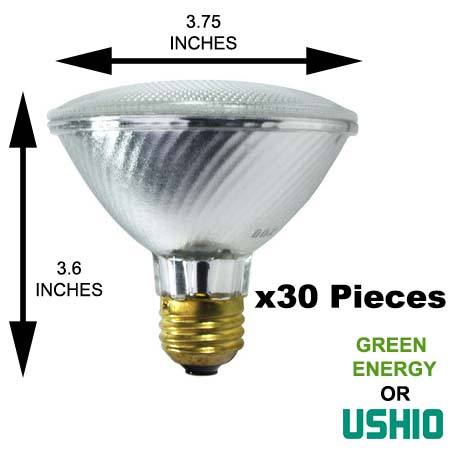 Halogen PAR30 light bulb