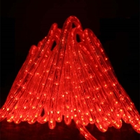Red Rope Lights LED 50