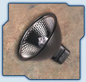 Light Bulb Ushio-Reflekto MR16,Light Bulbs, Lamp, Bulbs, Halogen lamp, low voltage bulbs, bubls, no back light