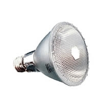 ProPar30LN ProPar, PAR30, Long Neck, LN, Spot, Narrow Flood, Flood, lamp, light bulb, discount, wholesale