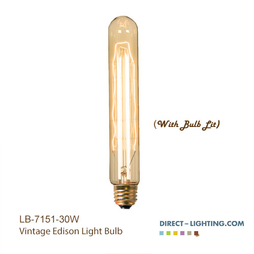 Antique Light Bulb - T10 - E26 Base - Incandescent - 30W -