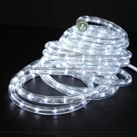 Buy cool white rope lights and led rope lights direct ul direct 24 cool white led rope light aloadofball Gallery