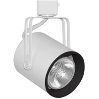 Juno Lighting 423 Par20 Track Light Direct