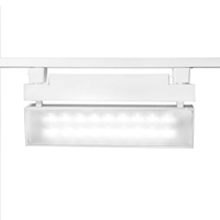 WAC Lighting LED42  42W LED Wall Washer White