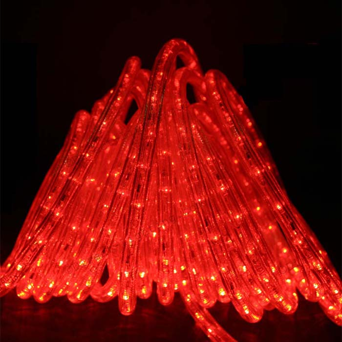 Red Rope Lights LED 50'