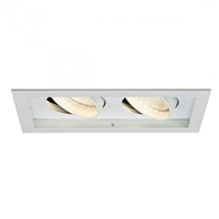 WAC Lighting 2-Light PAR30 Line Voltage Multiple Spot Recessed Trim MT-230  Multiple Spot Recessed Light Trim, Multiple Recessed Spots, Adjustable recessed lights, MT-230