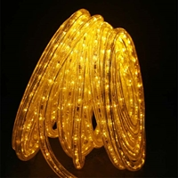 Yellow Rope Lights LED 50